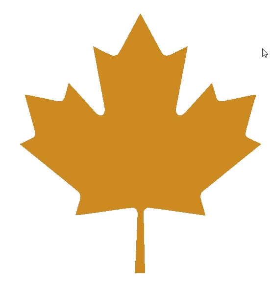 candian owned and owned company toronto