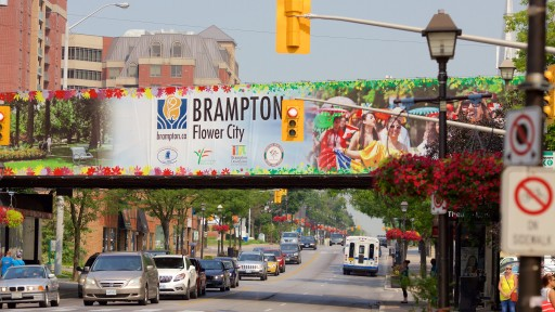 Gold and Silver Bullion Dealers in Brampton